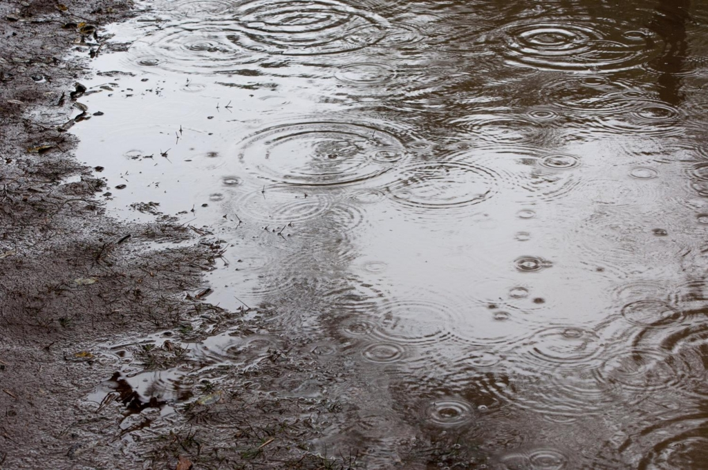 雨の日の風水鑑定はわかりやすい!